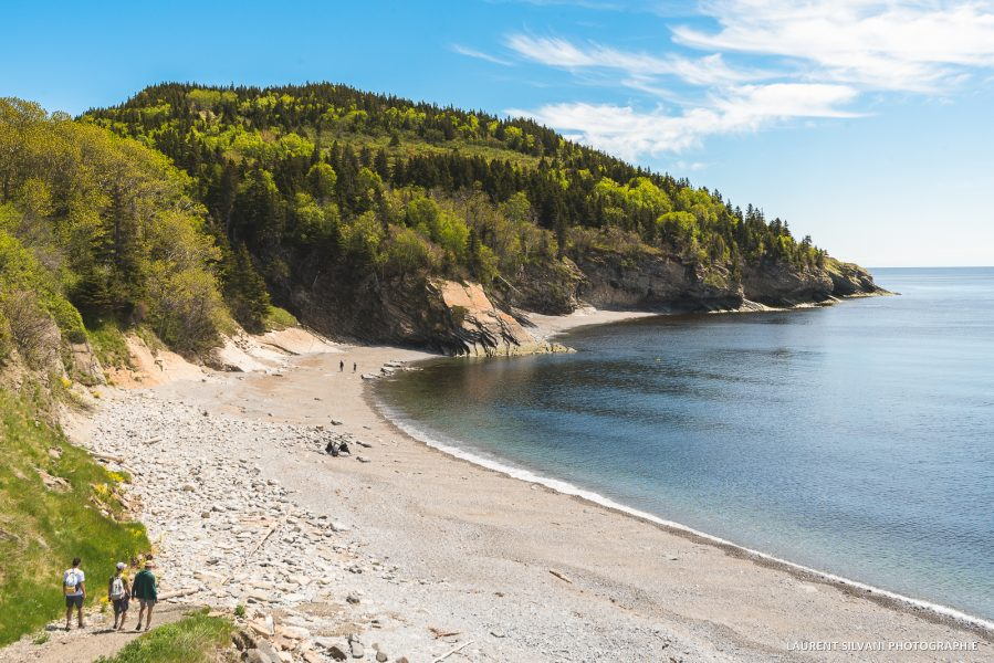 La nature grandiose de la Gaspésie