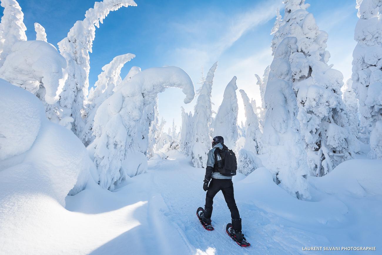 Vallée des fantômes dans les Monts-Valin