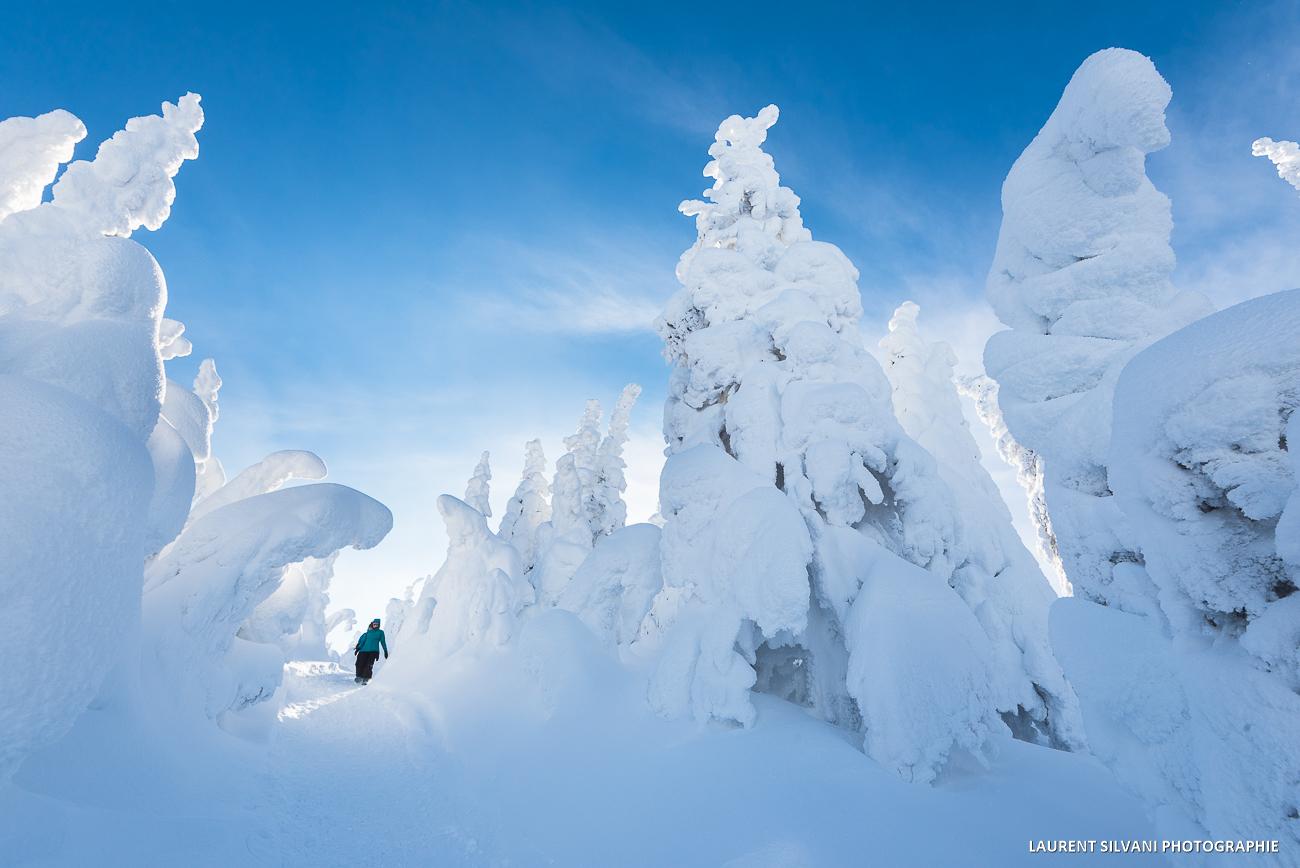 Paysage hivernal des Monts-Valin